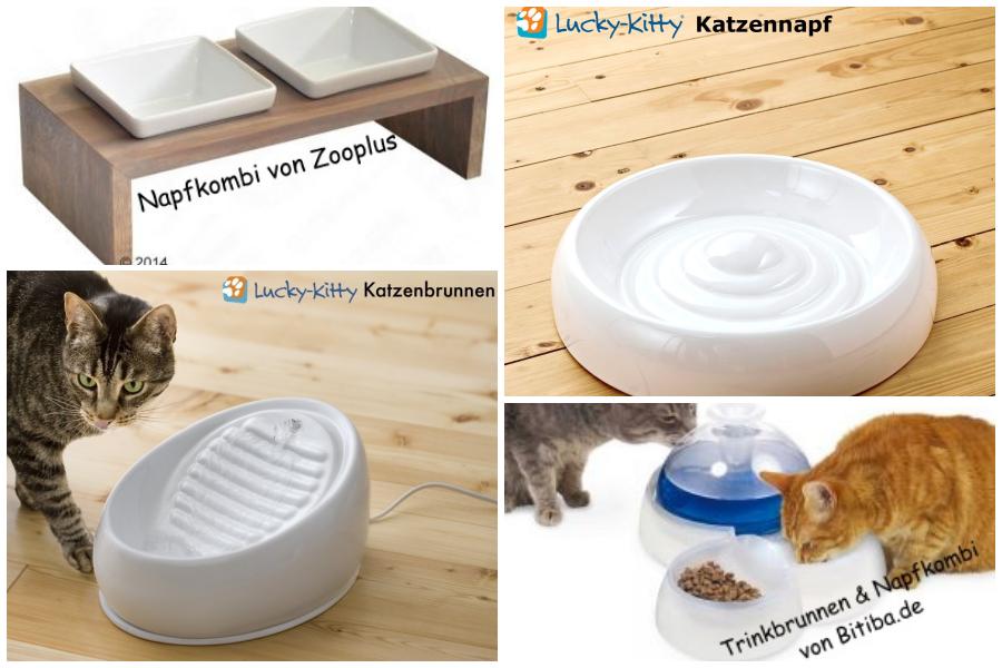 Katzenbrunnen Katzennäpfe